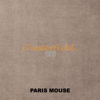 Paris Mouse
