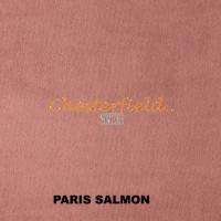 Paris Salmon